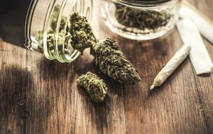 Dispensary law group