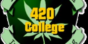 California 420 institute
