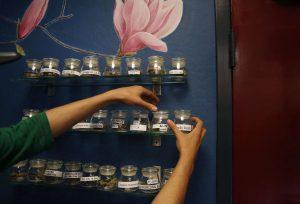 Bookkeeping Marijuana collectives