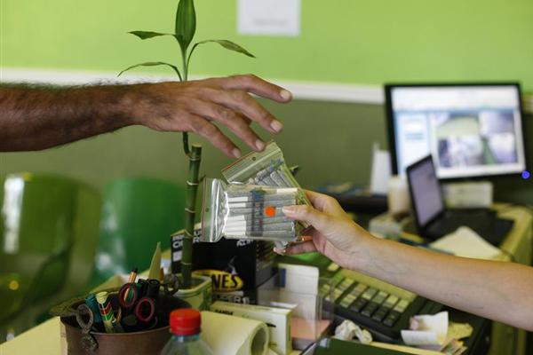 Cannabis distribution permits