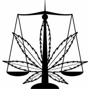 Marijuana business law